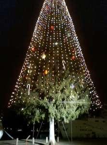 Lite närmare bild på julgranen där man ser julgransprydnaderna