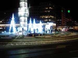 LED-djur lyser upp på kvällen